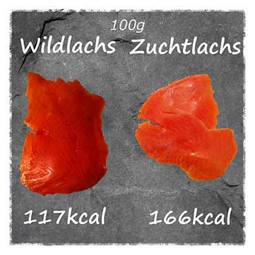 wildlachs