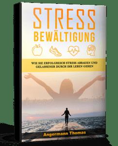 stressbewältigung buch