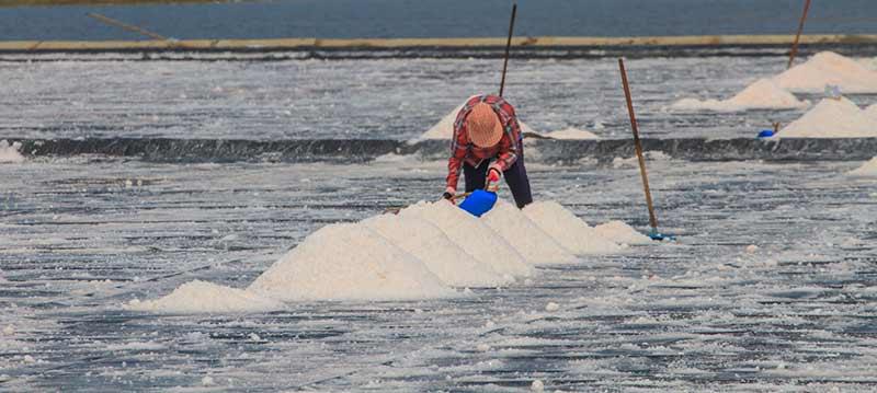 salz Arbeiter